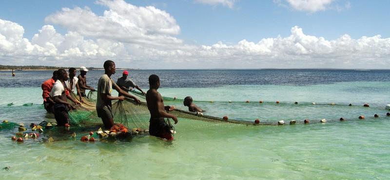Mozambico 2008