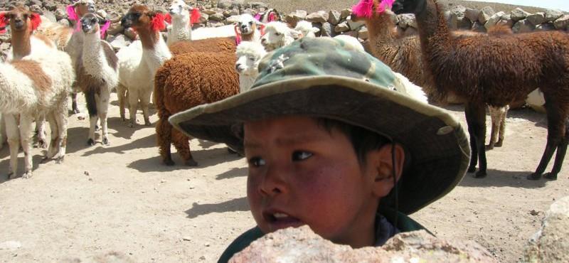 Perù 2007