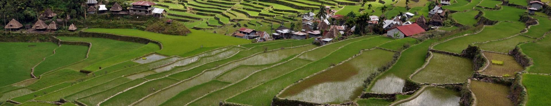Filippine 2011