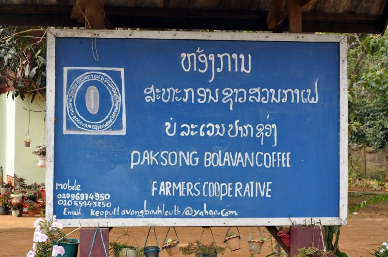 laos2013 (183)