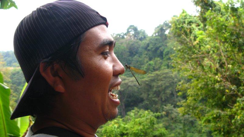 lombok10