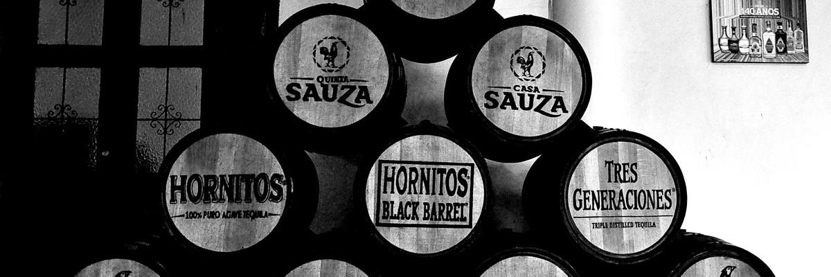 Tequila, nella terra dell'agave blu