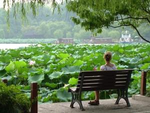 illagodihangzhou2