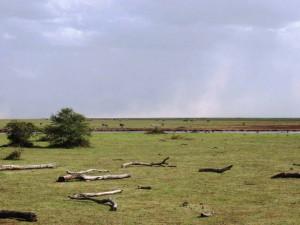lakemanyara