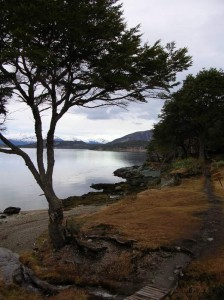 patagonia35